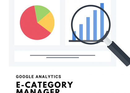 Google analytics e-category manager