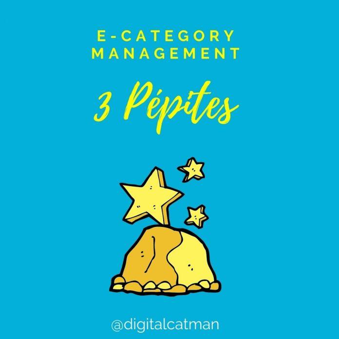 Pépites E-Category Management wp